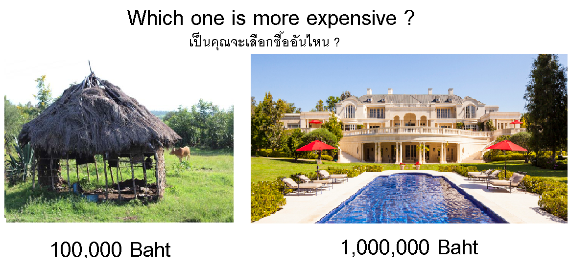 which-one-is-more-expensive